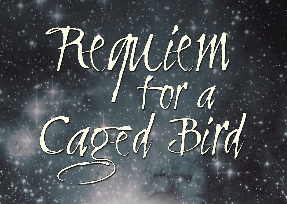 """Requiem for a Caged Bird"" Part III by Dory Fiamingo"