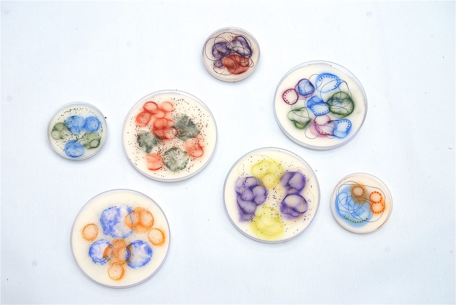 Kay Hartung's Microbial Visions of An Unseen World