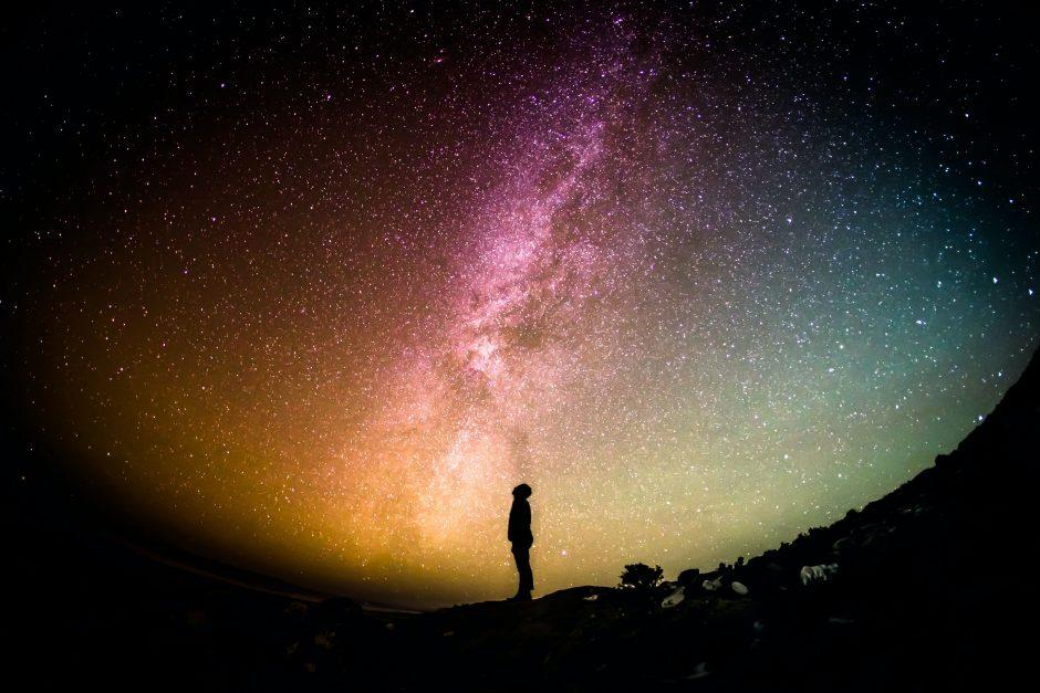 Maziar Karim – The Poetry of Pondering