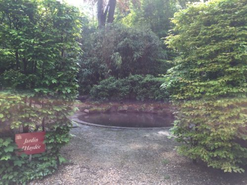Hayden garden