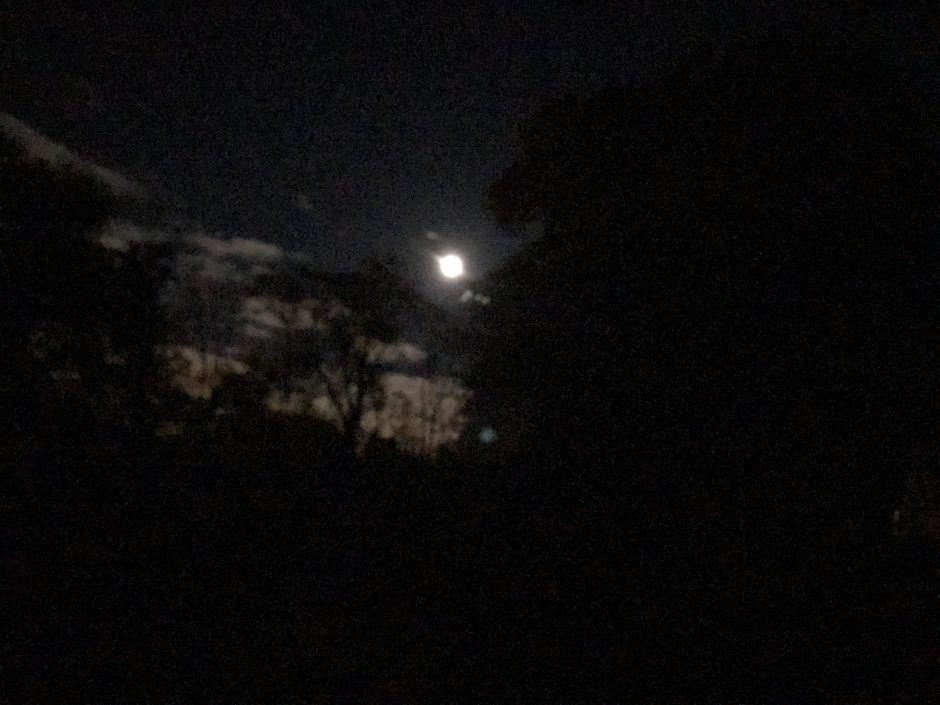 """Silver Moons"" – a Short Story by Katinka Smit"