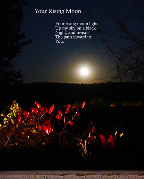 Your Rising Moon